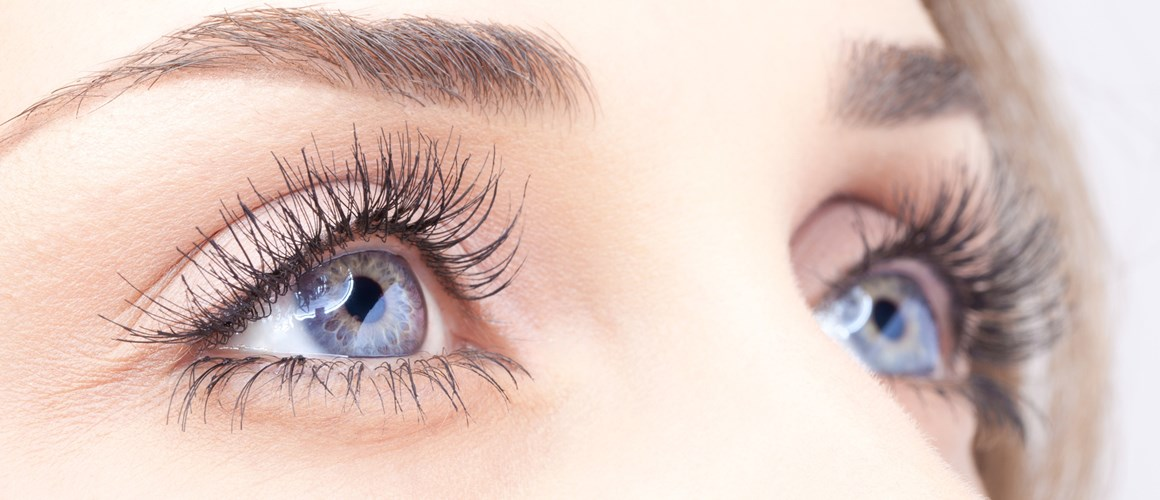 Eye Treatment For Eyebrows Eyelashes Matchpoint